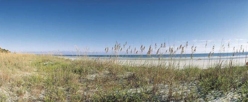 Beach Scene 22.jpg