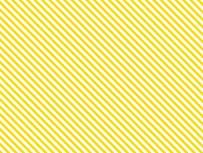 12-Stripes
