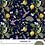 Thumbnail: NBB Hummingbird 3