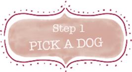 step-1-1_orig.png