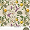 Thumbnail: NBB Hummingbird 2