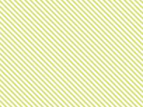 13-Stripes