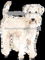 49 Wheaten Terrier