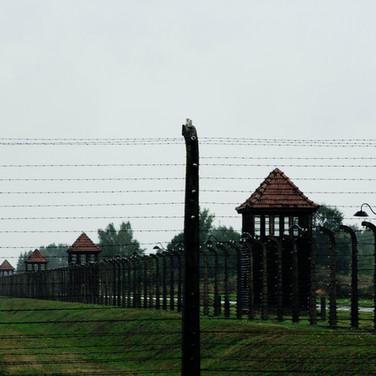Fence and watch tower, Auschwitz-Birkenau