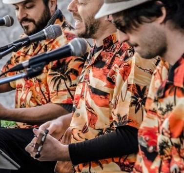 Nof Ginosar: A Preview on the Friendliest Folk Festival 'Jacob's Ladder Winter Weekend Festi