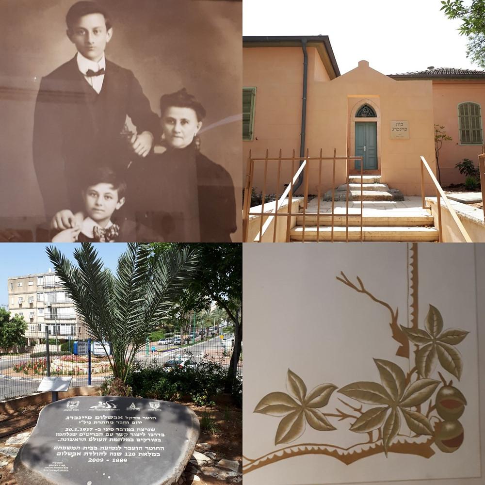 Hadera Feinberg House