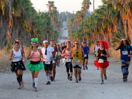 Half Marathon Beaujolais 2021: On Your Marks - Get Set - Cheers!