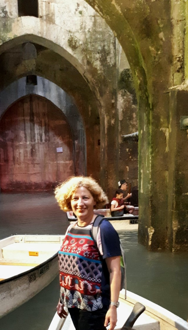 The Arches Pool, Ramla