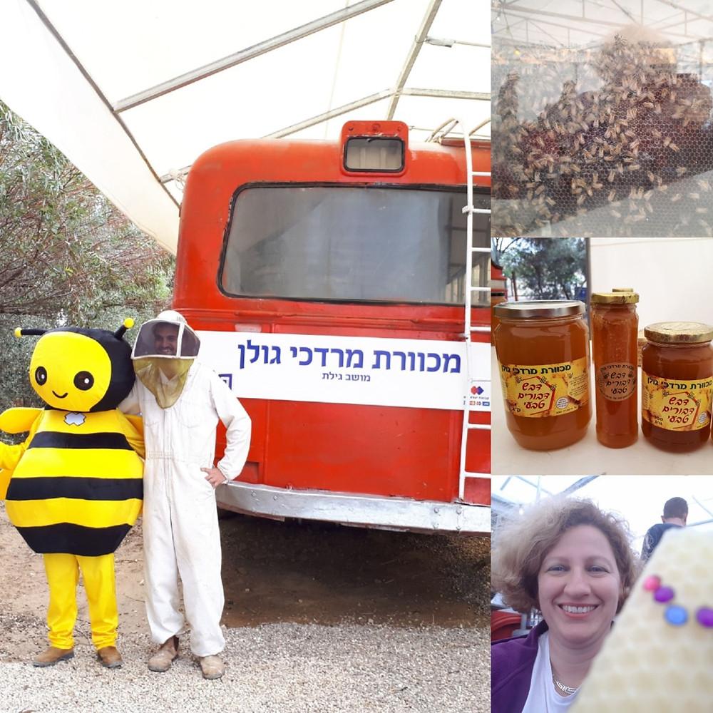 Golan Mordechai Apiary, Moshav Gilat