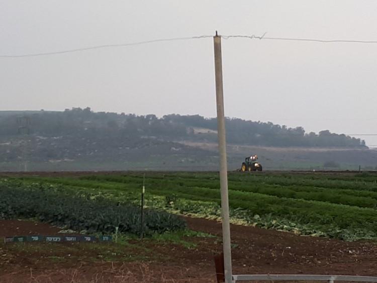 Kibbutz Lavi Eco Vegetable Farm