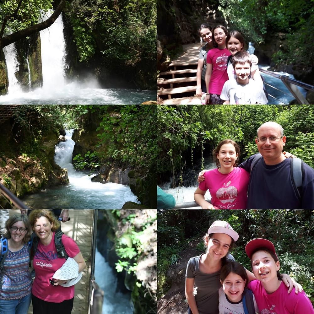 Banias Nature Reserve, Falls