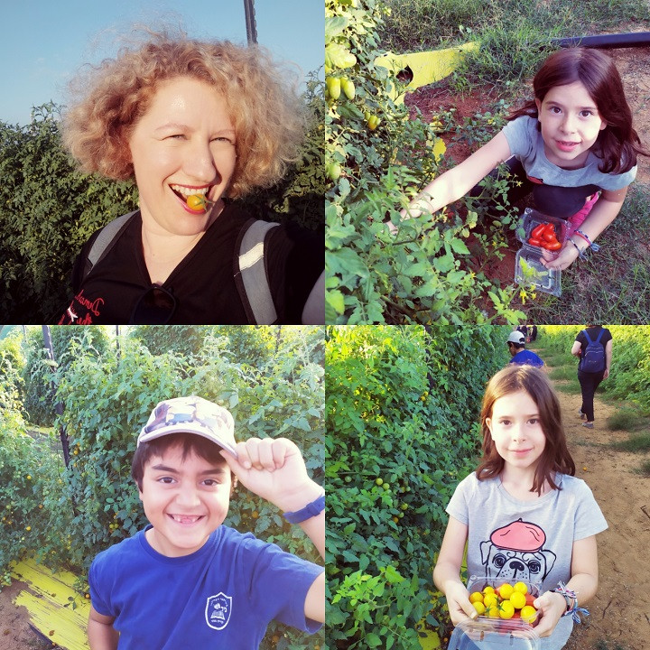 Hod Hasharon: A Seasonal Field Trip