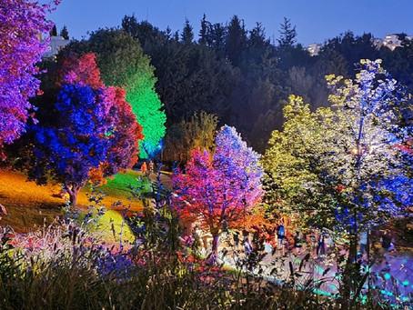 """The Jerusalem Botanical Garden Featuring its Main Summer Event: """"SNOW SHOW"""""""