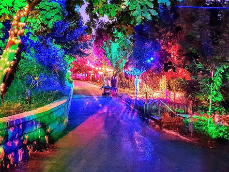 """Jerusalem Botanical Gardens: A Preview of """"The Land of Fairytales"""""""