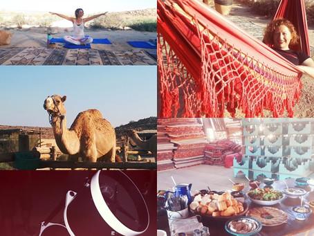 Negev Nights: A Summer Destination