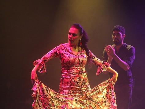 Remangar Flamenco: Puertas