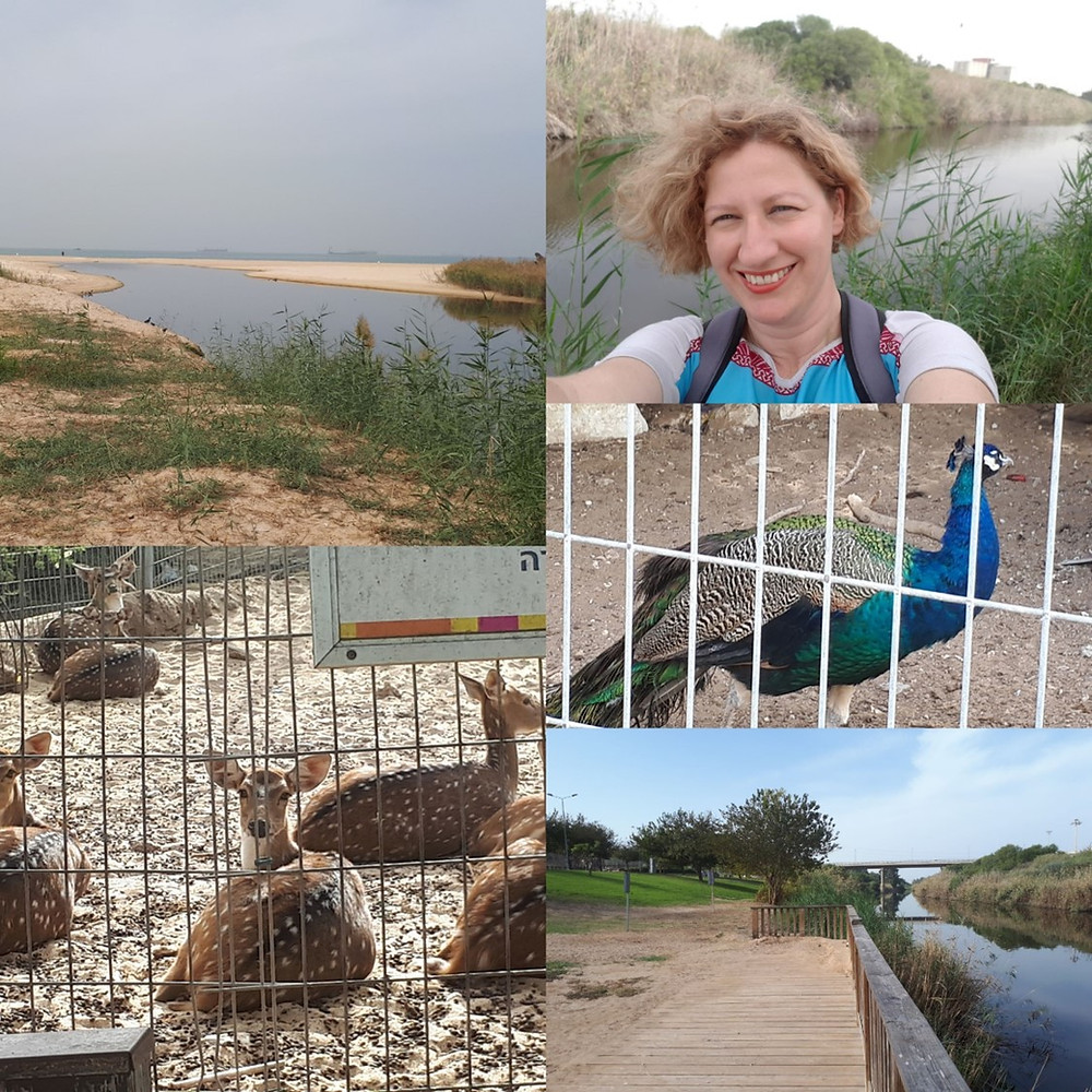 Lachish River Park, Ashdod