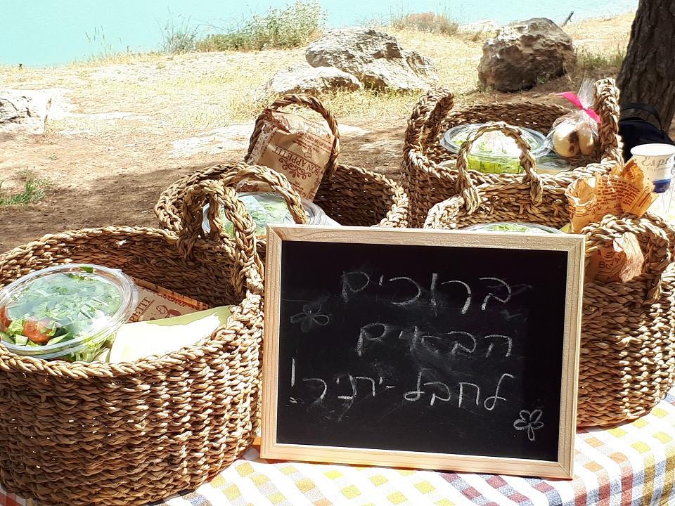 Yatir Forest Picnic