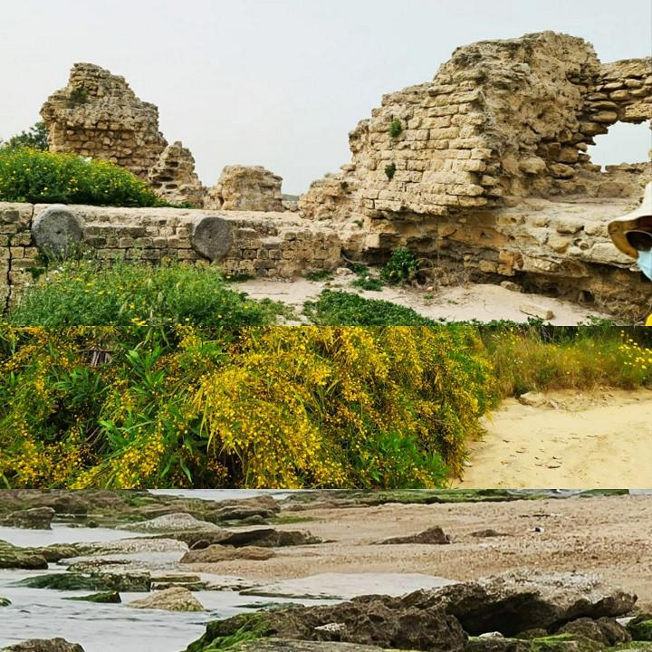 Walking the Ramparts of Ashkelon National Park