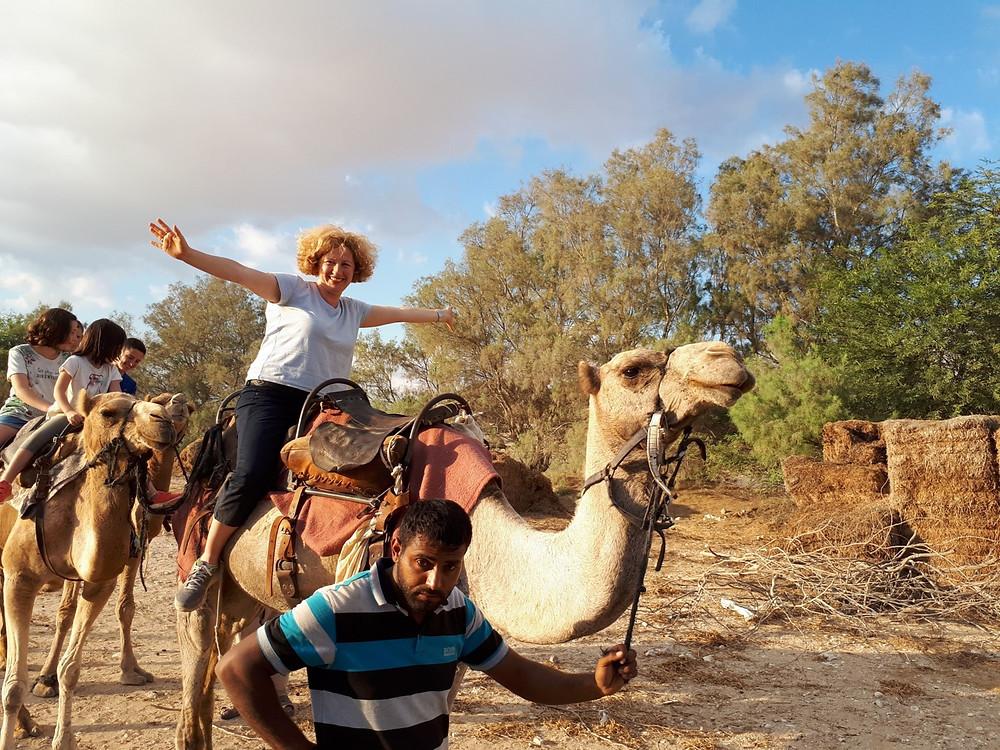 'Sfinat Midbar' - Camel Rides and Beduin Hospitality