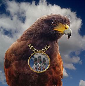 Aguila Coop.jpg