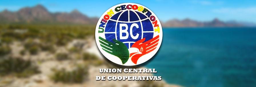 Baja_coop_ BANNER.jpg