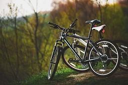 Fall cycling .jpg