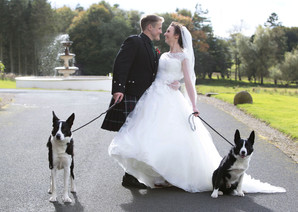 Photography bride & groom with dogs