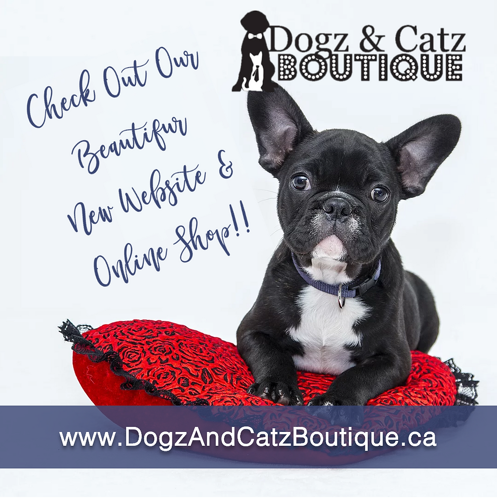 Dogz & Catz Boutique - Social Media Post Graphic designed by AG Social Co