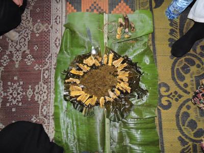 Bwiti Traditional Medicine | Ibogawaken