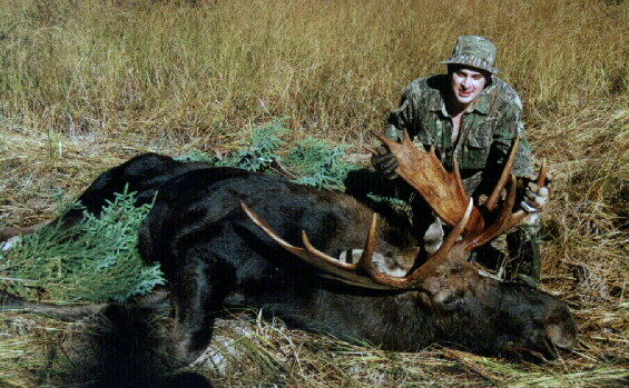 Moose Hunting at Horseshoe Island Camp