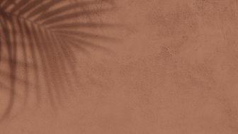 Cork Texture Background Image