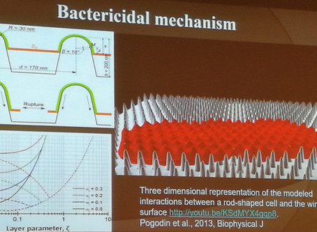 Fighting Superbugs: Biomimetic Nanostructures