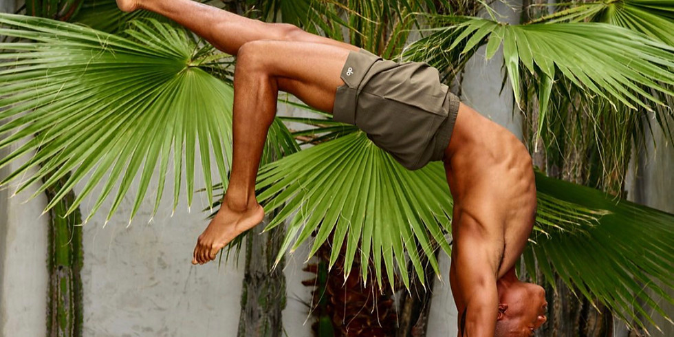 Heart Opening Arm Balances with Andrew Sealy