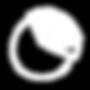 noun_Pie Chart_1239009_000000 WHITE.png