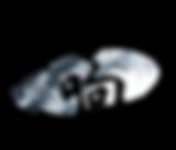 syncretic logo
