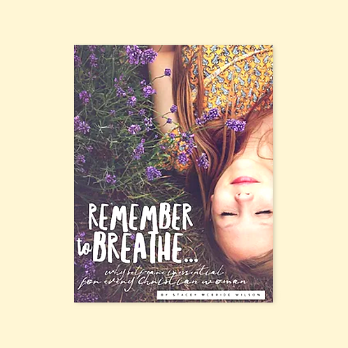 Remember to Breathe ebook
