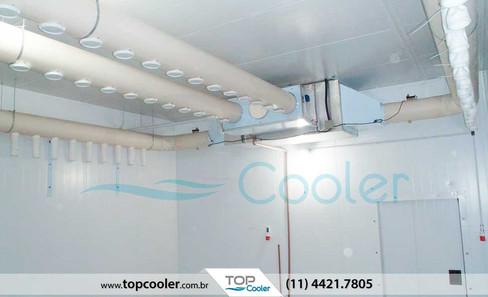Sistema-de-Refrigeração-para-Cura-e-Secagem-de-Queijos,-Salames-e-Embutidos---Câmara-de-Maturação.jpg