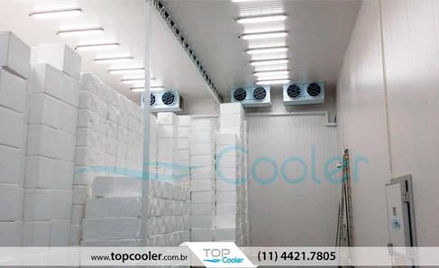 Câmara-Fria-de-Medicamentos-e-Vacinas-com-Sistema-de-Refrigeração-TOP-COOLER-com-Backup-e-SITRAD.jpg