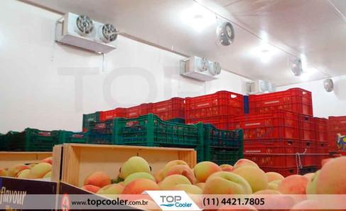 Câmara-Fria-para-Frutas-(Pêssego)_Sistema-de-Refrigeração-com-Umidificação-do-Ar.jpg