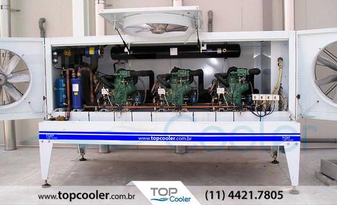 Unidade-Condensadora-Industrial-para-Túnel-de-Congelamento-e-Resfriamento-(Pescados).jpg