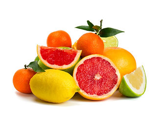 Large variety of citrus grown and packed