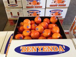 mandarins11