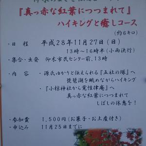 平成28年11月観光案内のお知らせ