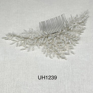 UH1239.jpg