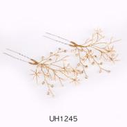 UH1245.jpg