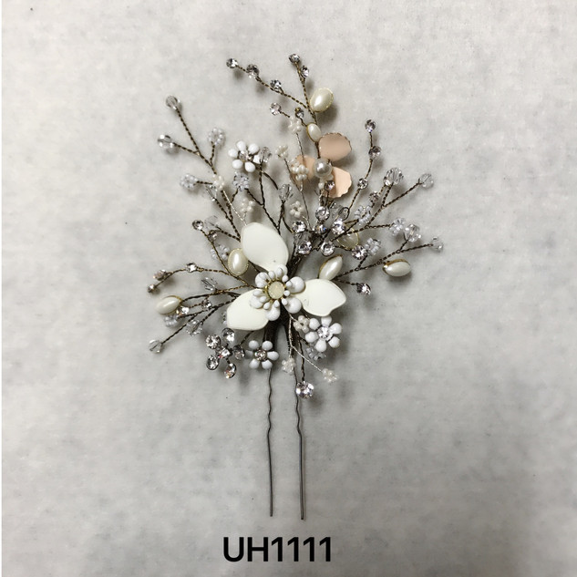 UH1111.jpg