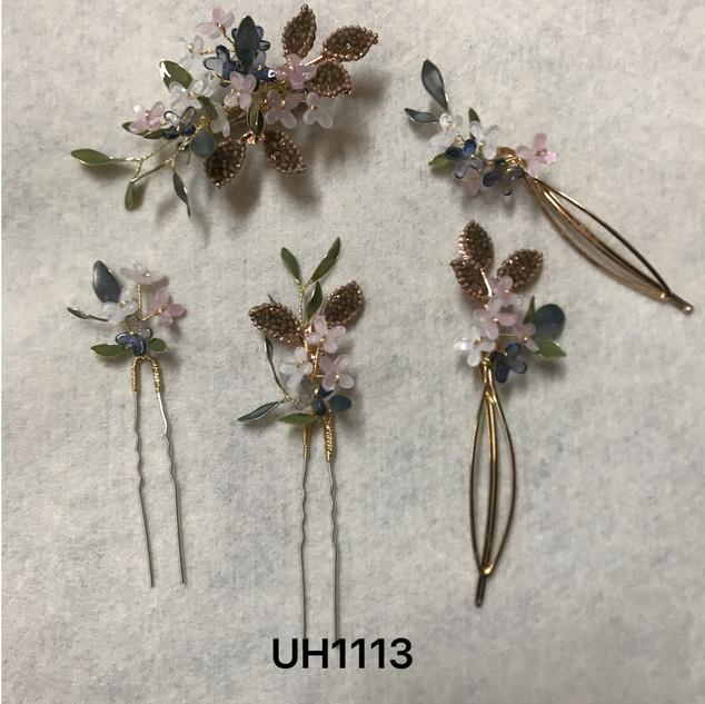 UH1113.jpg