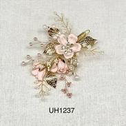 UH1237.jpg