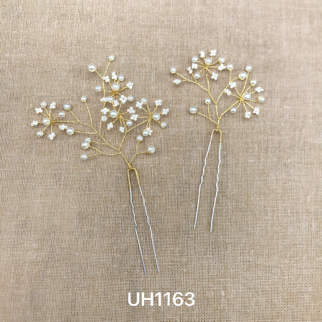 UH1163.jpg